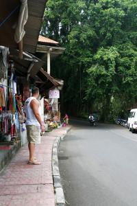 Visiting the Sacred Monkey Forest in Ubud, Bali