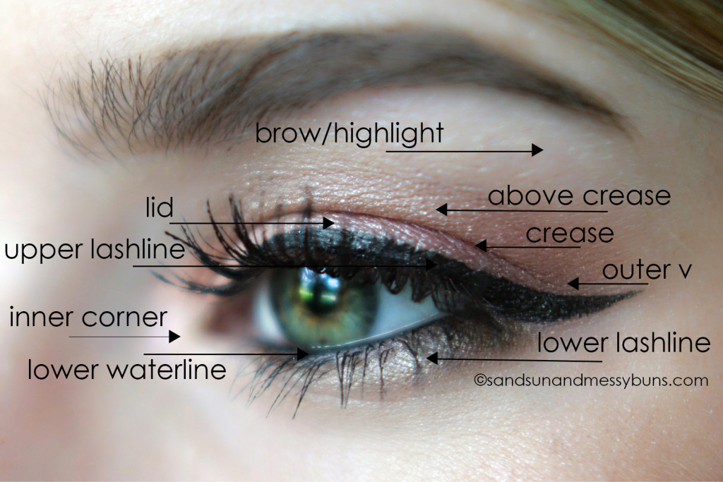 makeup 101 eyeshadow diagram for makeup newbies sand sun messy buns rh sandsunandmessybuns com Eyeshadow Application Techniques Chart Eyeshadow Application Guide