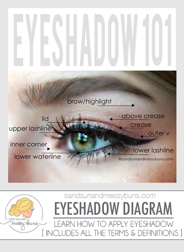 Makeup 101 eyeshadow diagram for makeup newbies sand sun messy buns ccuart Gallery