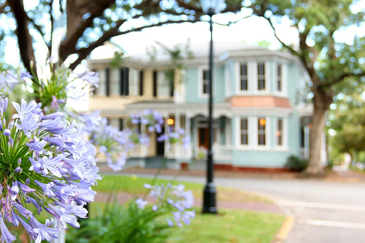 A beautiful park-like square in Savannah bordered by blooming purple flowers and Victorian homes.
